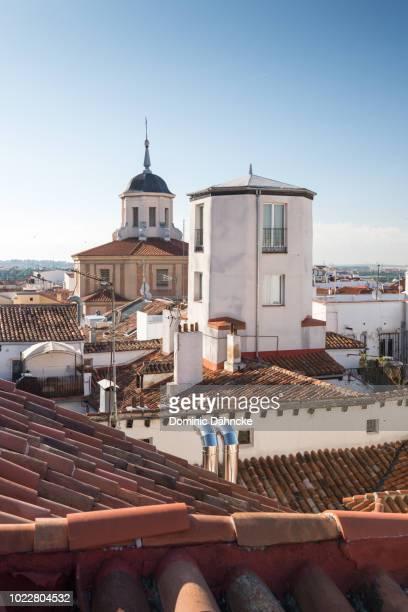 Roofs of Madrid city (Madrid. Spain)
