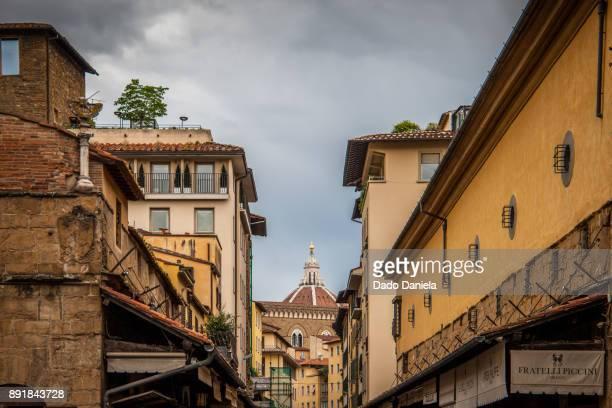 Roofs of Ponte Vecchio