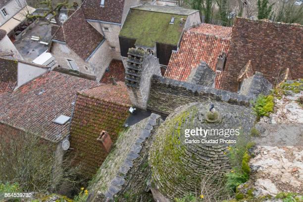 roofs of the medieval old town of rocamadour, france - mousse végétale photos et images de collection