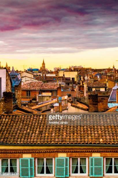 roofs of toulouse - toulouse photos et images de collection