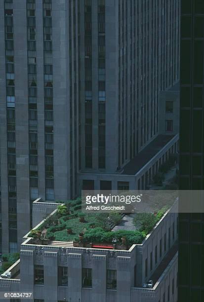 A rooftop garden on the Rockefeller Center New York City 1985