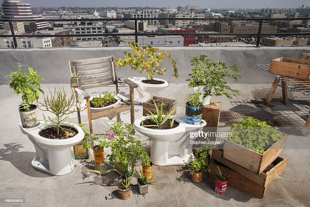 garden materials. A Rooftop Garden That Utilizes Recycled Materials : Stock Photo R
