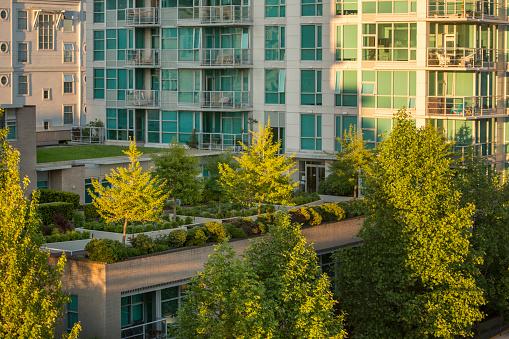 Rooftop Gardens - gettyimageskorea