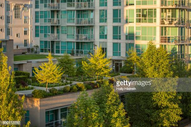 rooftop gardens - sustainable resources stock photos and pictures