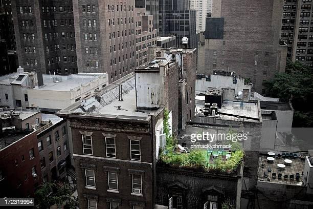 rooftop getaway