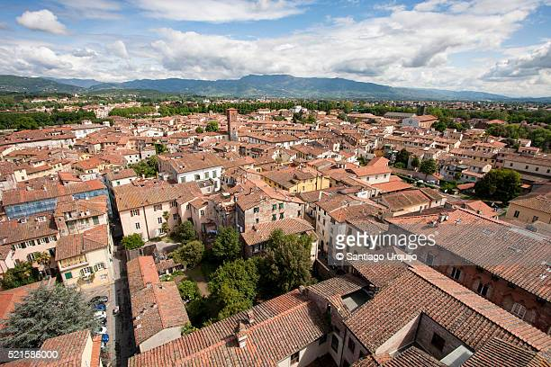 Rooftop view of city of Lucca