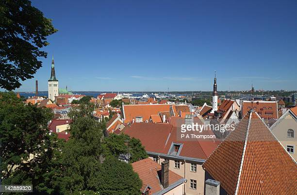 rooftops and church spires, tallinn, estonia - harjumaa stock pictures, royalty-free photos & images