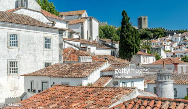 rooftops in obidos cityscape, leiria, portugal - leiria photos et images de collection
