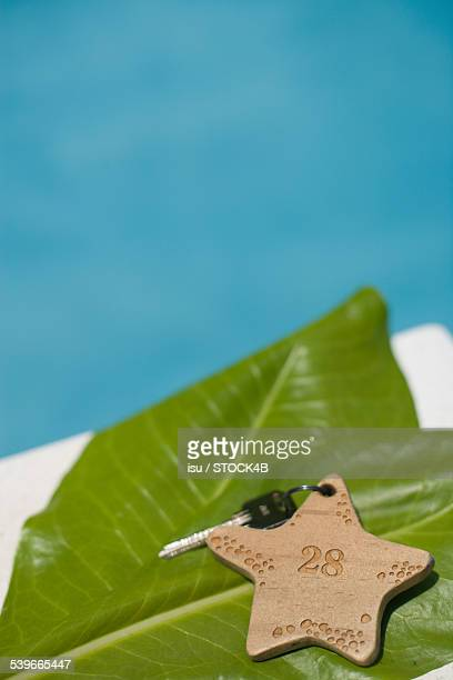Room key on leaf at the poolside, Maldives