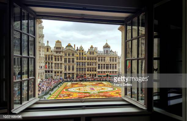 A room with a view, Flower Carpet, Grand Place, Brussels, Belgium