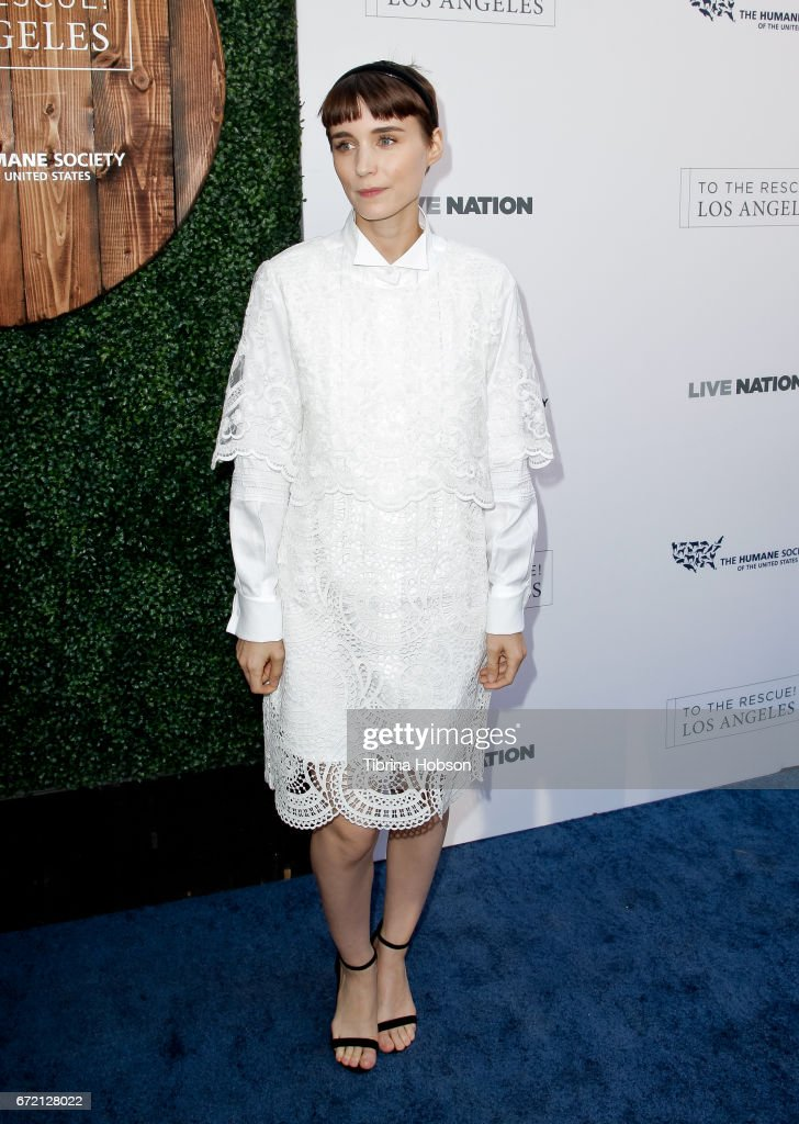 Rooney Mara attends the Humane Society's annual 'To The Rescue' Gala on April 22, 2017 in Los Angeles, California.