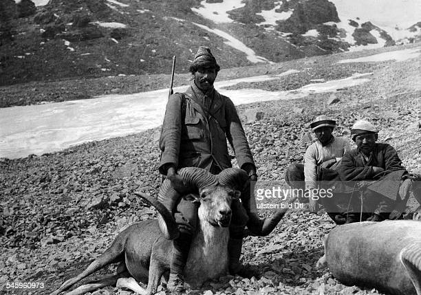 Roosevelt Theodore sons James Simpson Roosevelt Field Museum Expedition to Central Asia Native expedition helper wiht an Argali shot by Kermit R...