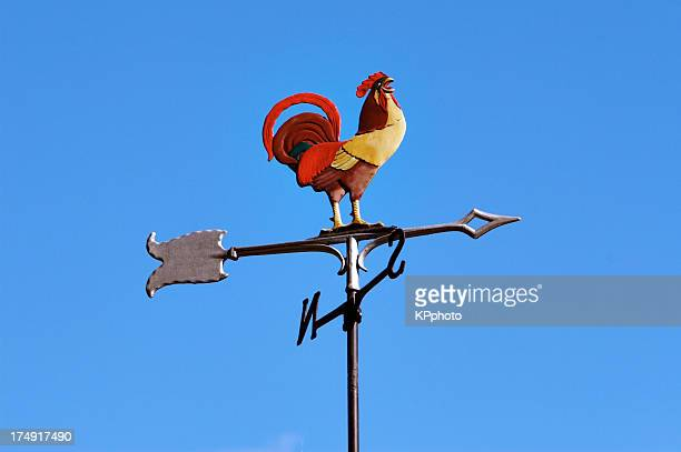 gallo e il venti#2 - gallo foto e immagini stock