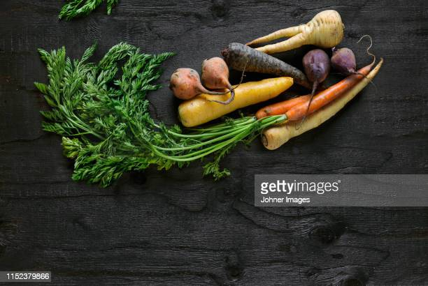 root vegetables on black background - root vegetable stock pictures, royalty-free photos & images
