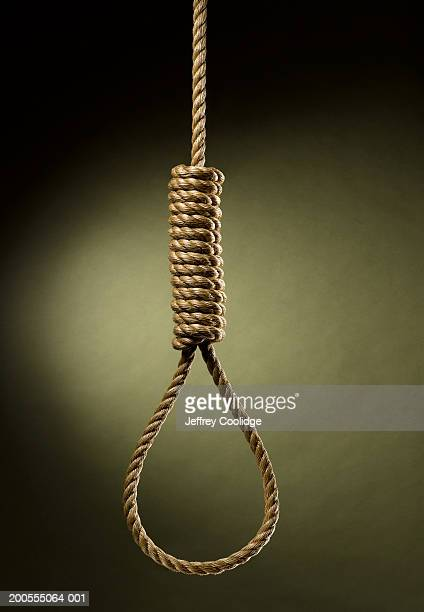rope noose hanging - execution stock pictures, royalty-free photos & images