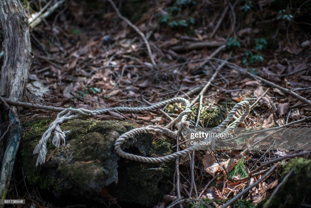 A rope remains at the scene of an apparent suicide in Aokigahara forest, on March 13, 2018 in Fujikawaguchiko, Japan. Aokigahara forest lies on the on the northwestern flank of Mount Fuji and in recent years has become known as one of the world's most prevalent suicide sites. The density of the forest is believed to be a contributing factor with people often tying string to trees to find their way back to a path in case they change their mind. In 2010, officials recorded more than 200 attempted suicides in the forest with attempts said to increase during the end of the Japanese fiscal year. In recent years, local officials have stopped publicising the numbers in an attempt to decrease Aokigahara's association with suicide.