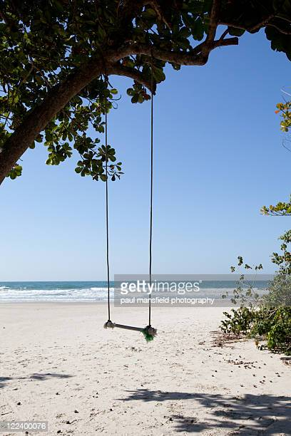 Rope swing on sandy beach