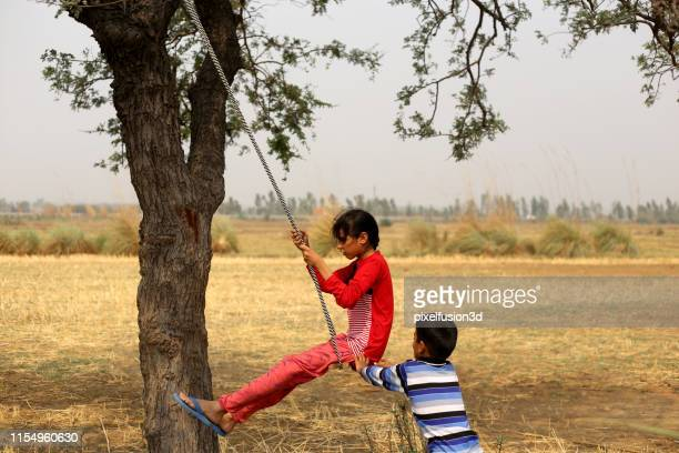 rope swing! - haryana stock photos and pictures