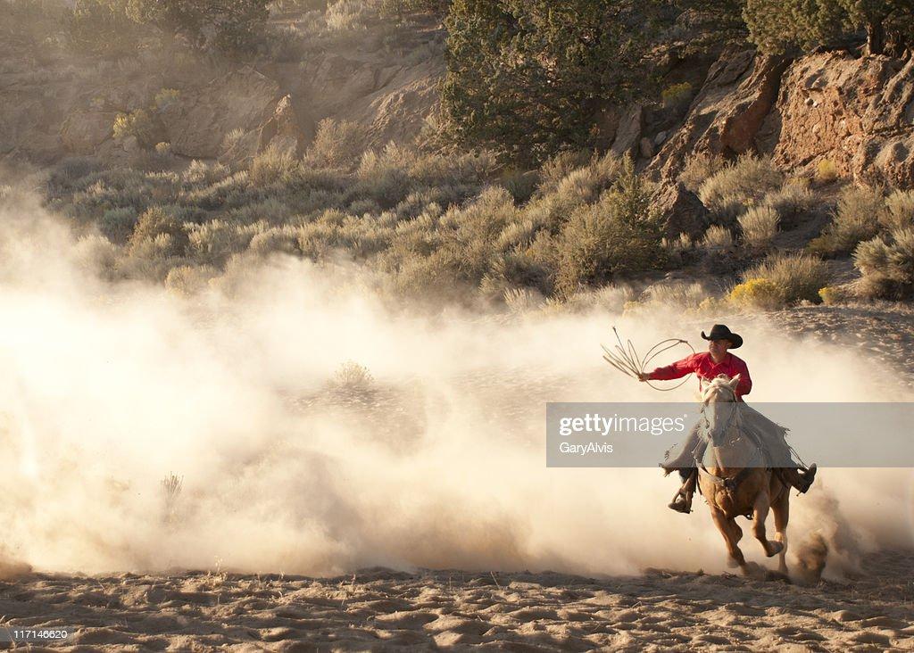 Roper cowboy, arm raised, on running horse-backlit dust : Stock Photo