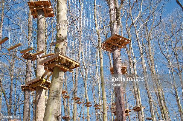 ropes course in a forest