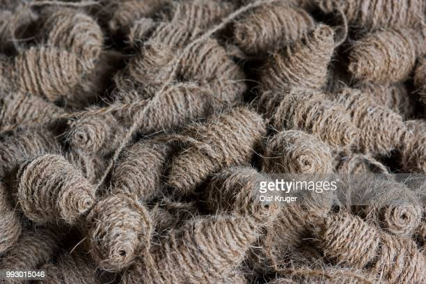 60 Top Coir Pictures, Photos and Images - Getty Images