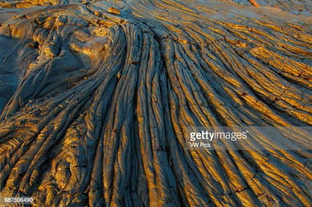 Ropy Pahoehoe Lava from Kilauea Eruption at Sunrise Kaimu Beach at Kalapana Black Sand Beach Kaimu Bay Puna District Big Island of Hawaii
