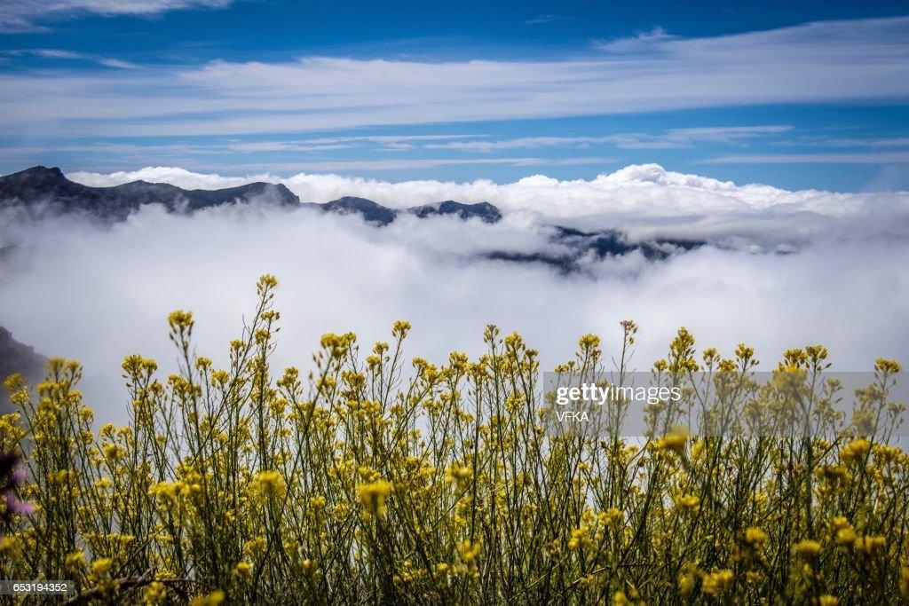 Roque de los Muchacos, La Palma, Spain : Stock Photo