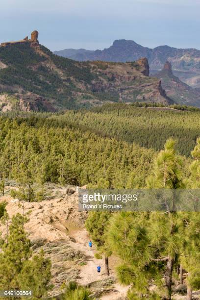 roque nublo in the centre of gran canaria - tejeda stock pictures, royalty-free photos & images