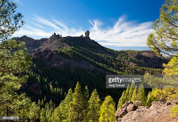 roque nublo - las palmas de gran canaria stock pictures, royalty-free photos & images