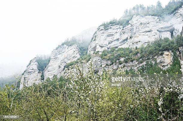 roquefort limestone cliffs in mist, france - roquefort cheese stock photos and pictures