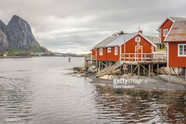 rorbuer (fishermen's cabins) in reine norway - lofoten stock pictures, royalty-free photos & images