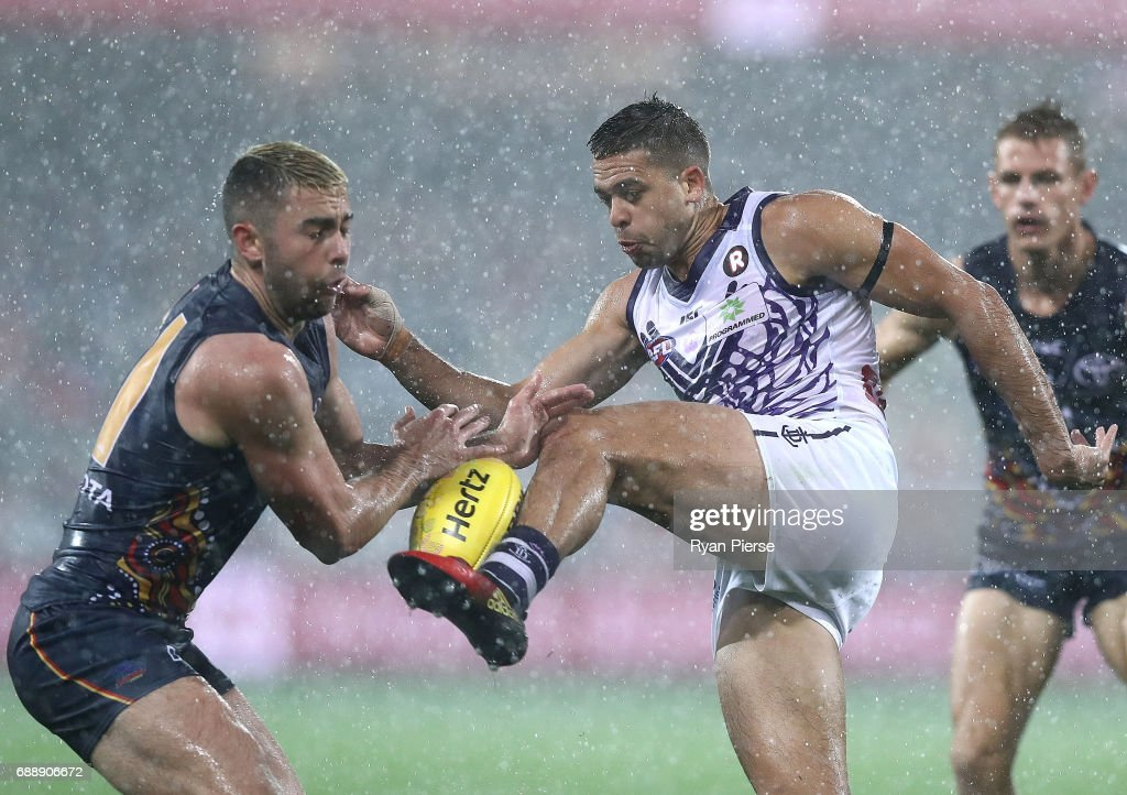 AFL Rd 10 - Adelaide v Fremantle : News Photo