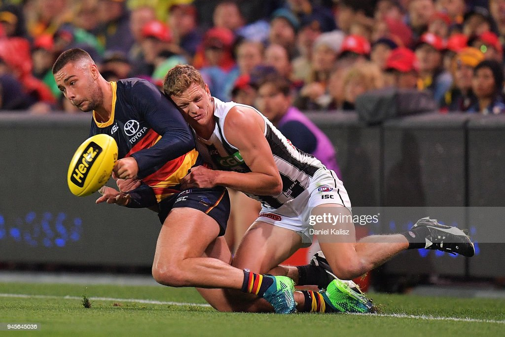 AFL Rd 4 - Adelaide v Collingwood : News Photo