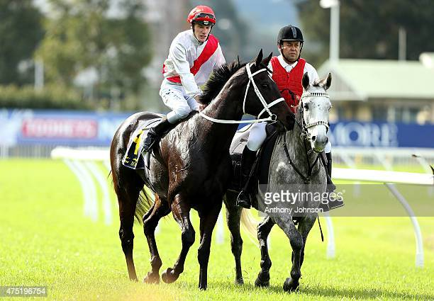Rory Hutchings returns on Lucy's Look after winning race 3 The TAB Rewards Handicap during Sydney Racing at Rosehill Gardens on May 30 2015 in Sydney...