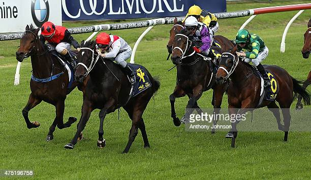Rory Hutchings rides Lucy's Look to win race 3 The TAB Rewards Handicap during Sydney Racing at Rosehill Gardens on May 30 2015 in Sydney Australia