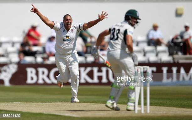 Rory Kleinveldt of Northamptonshire appeals unsuccessfully during the Specsavers County Championship division two match between Northamptonshire and...