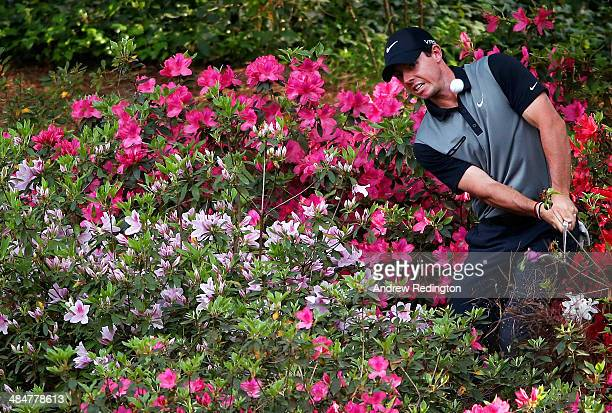Rory McIlroy of Northern Ireland hits a shot out of the the azalea bushes behind the 13th green during the second round of the 2014 Masters...