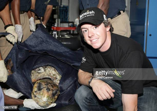 Rory McIlroy with a critically endangered Loggerhead Turtle rescued in the last 24 hours near Dubai and taken to the Dubai Turtle Rehabilitation...