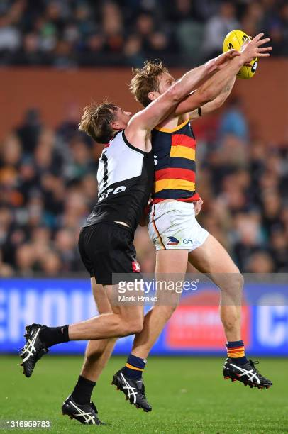 Rory Sloane of the Crows marks in front of Tom Jonas of Port Adelaide during the round eight AFL match between the Port Adelaide Power and the...