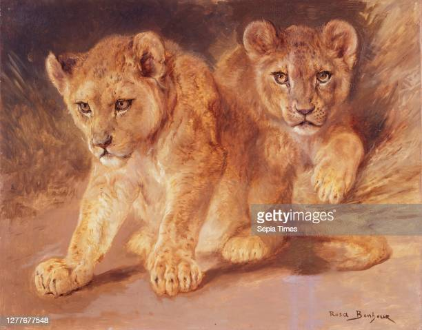 Rosa Bonheur, Lion Cubs, n.d., oil on canvas, 25 in. X 31 1/4 in. , The Walker sisters received this painting of two lion cubs from their friend Anna...