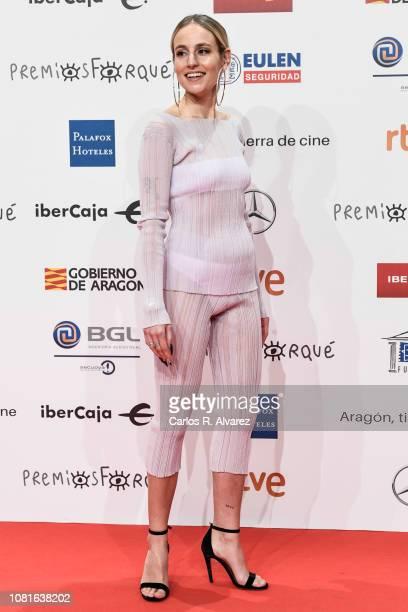 Rosa Maria attends the red carpet during 'Jose Maria Forque Awards' 2019 at Palacio de Congresos on January 12 2019 in Zaragoza Spain