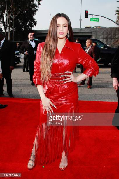 Rosalía attends the 62nd Annual GRAMMY Awards at STAPLES Center on January 26 2020 in Los Angeles California