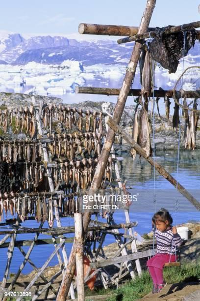 Rosalia faisant de la balancoire au milieu des morues polaires et de quelques morceaux de viande de phoque qui sechent sur le sechoir familial...