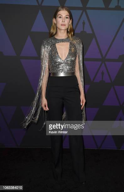 Rosamund Pike attends the Academy of Motion Picture Arts and Sciences' 10th annual Governors Awards at The Ray Dolby Ballroom at Hollywood Highland...