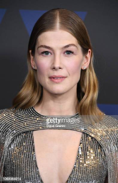 Rosamund Pike attends the Academy of Motion Picture Arts and Sciences' 10th annual Governors Awards at The Ray Dolby Ballroom at Hollywood & Highland...
