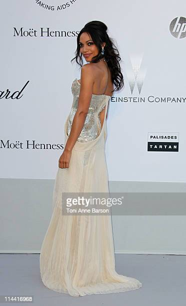 Rosario Dawson attends amfAR's Cinema Against AIDS Gala during the 64th Annual Cannes Film Festival at Hotel Du Cap on May 19, 2011 in Antibes,...