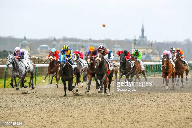 Rosario MANGIONE ride MY CHARMING PRINCE during the Chantilly Meeting at Hippodrome de Chantilly on December 21, 2020 in Chantilly, France.