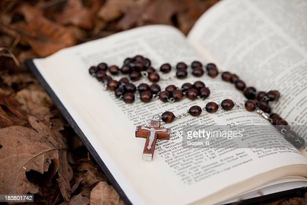 Rosary inside of a book on top of leaves