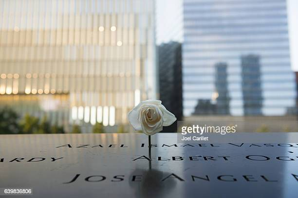 Rose at 9-11 Memorial at Ground Zero, New York City