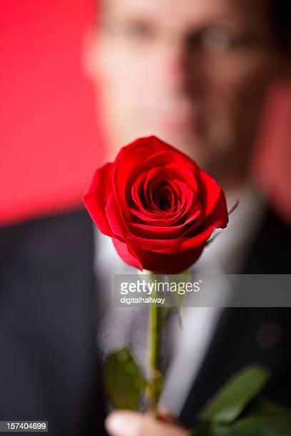 Rose für my valentine